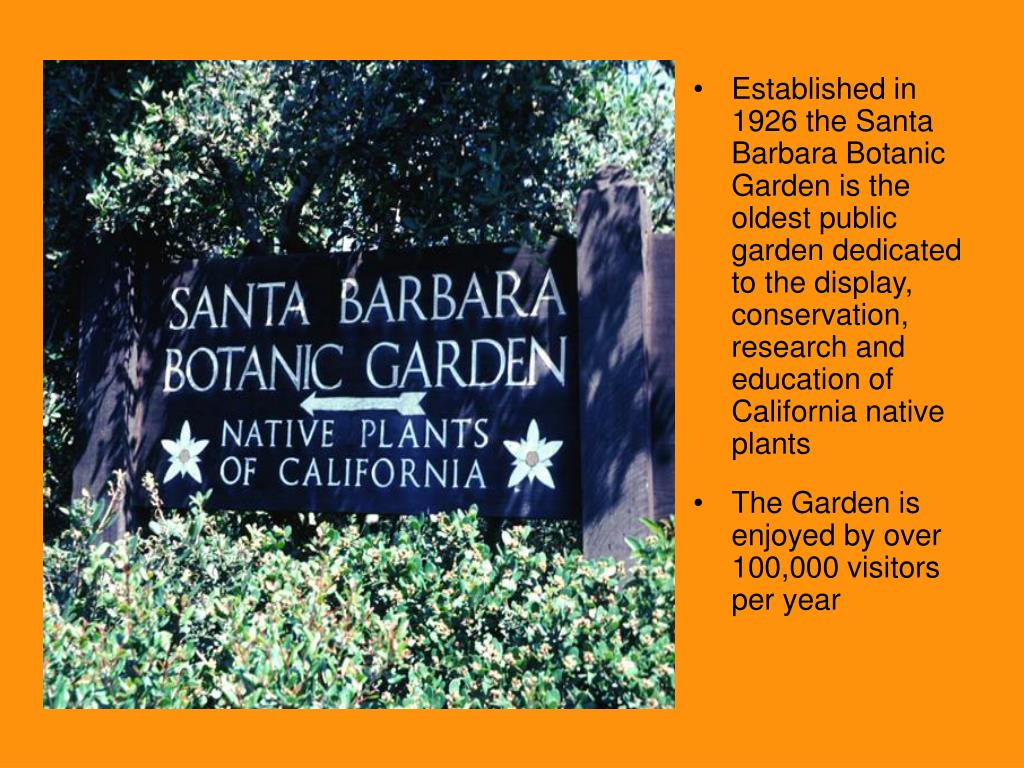 Established in 1926 the Santa Barbara Botanic Garden is the oldest public garden dedicated to the display, conservation, research and education of California native plants
