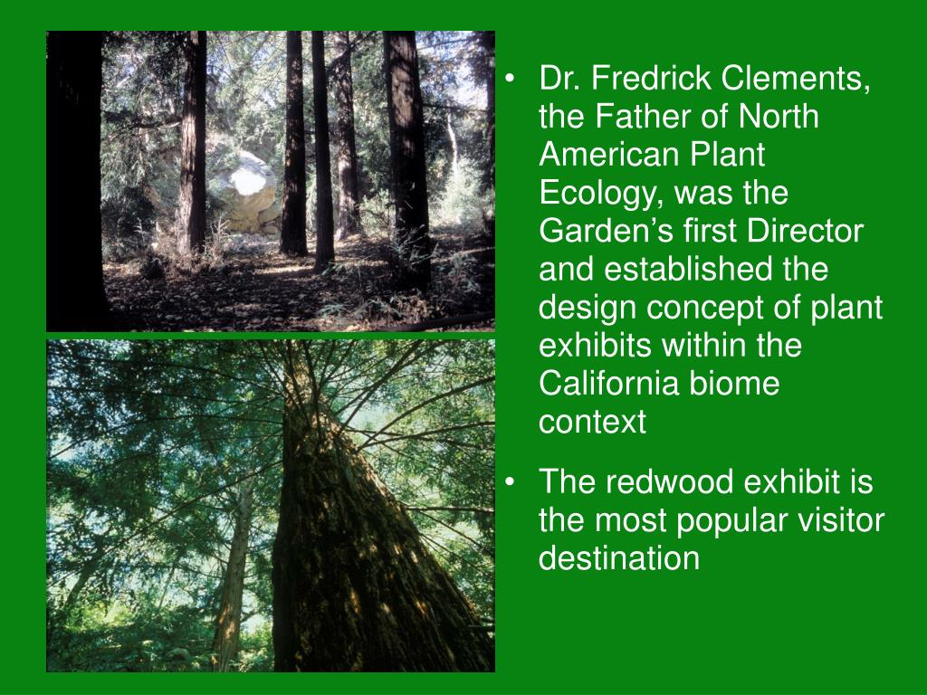 Dr. Fredrick Clements, the Father of North American Plant Ecology, was the Garden's first Director and established the design concept of plant exhibits within the California biome context