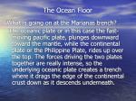 the ocean floor14