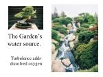 the garden s water source