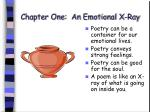 chapter one an emotional x ray11