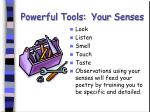 powerful tools your senses
