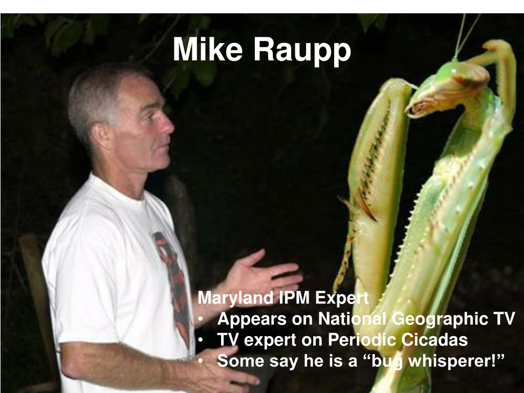 Mike Raupp