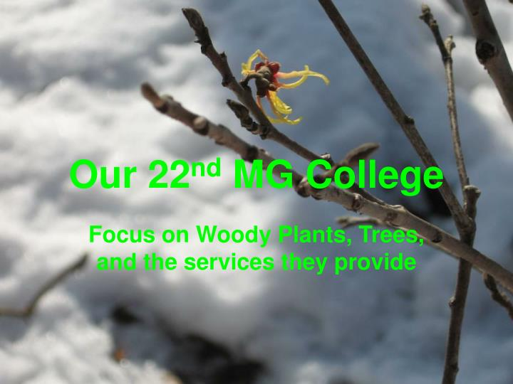Our 22 nd mg college