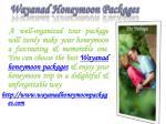 wayanad honeymoon packages