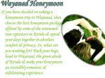 wayanad honeymoon7