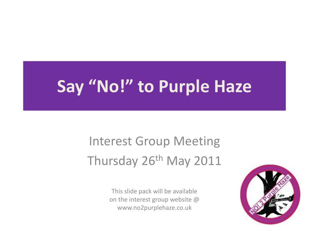 say no to purple haze l.