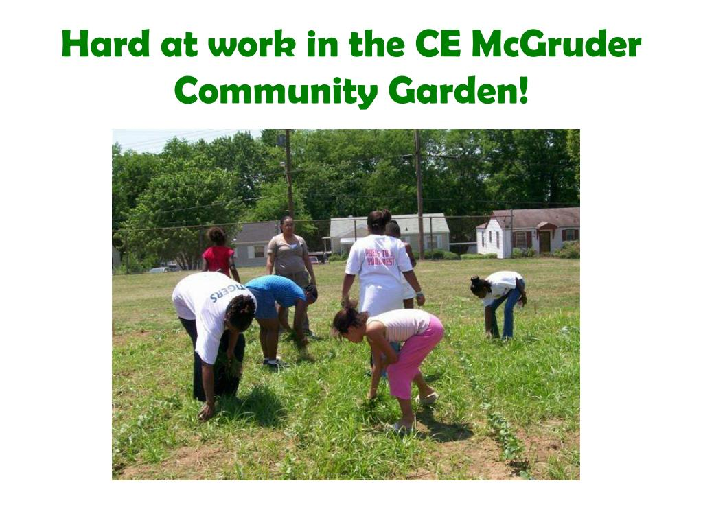 hard at work in the ce mcgruder community garden l.