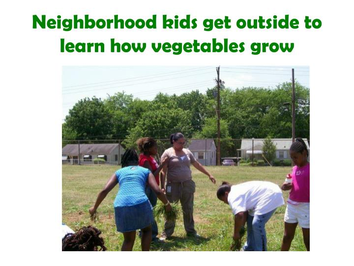 Neighborhood kids get outside to learn how vegetables grow