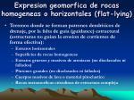 expresion geomorfica de rocas homogeneas o horizontales flat lying