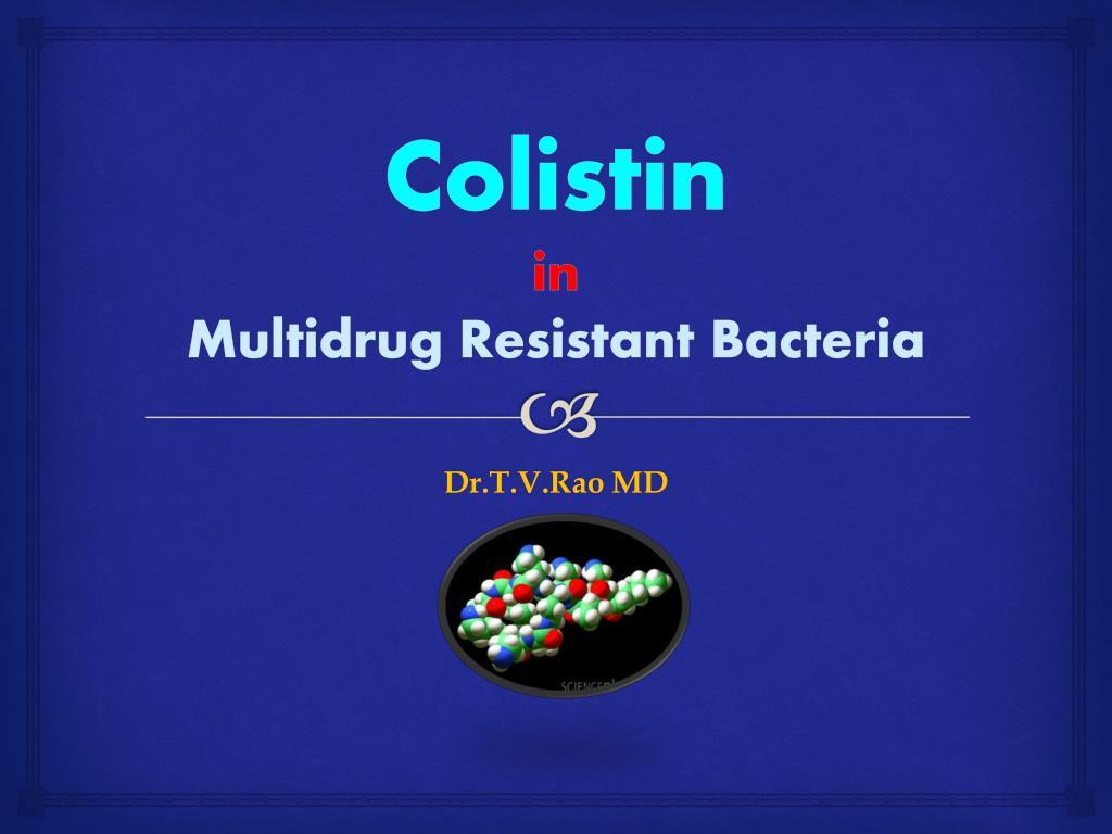colistin in multidrug r esistant bacteria l.