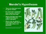 mendel s hypotheses