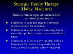 strategic family therapy haley madanes73