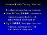 structural family therapy minuchin41