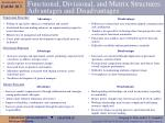 functional divisional and matrix structures advantages and disadvantages