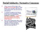 social solidarity normative consensus