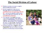 the social division of labour