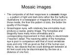 mosaic images
