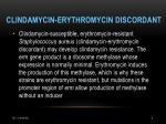 clindamycin erythromycin discordant