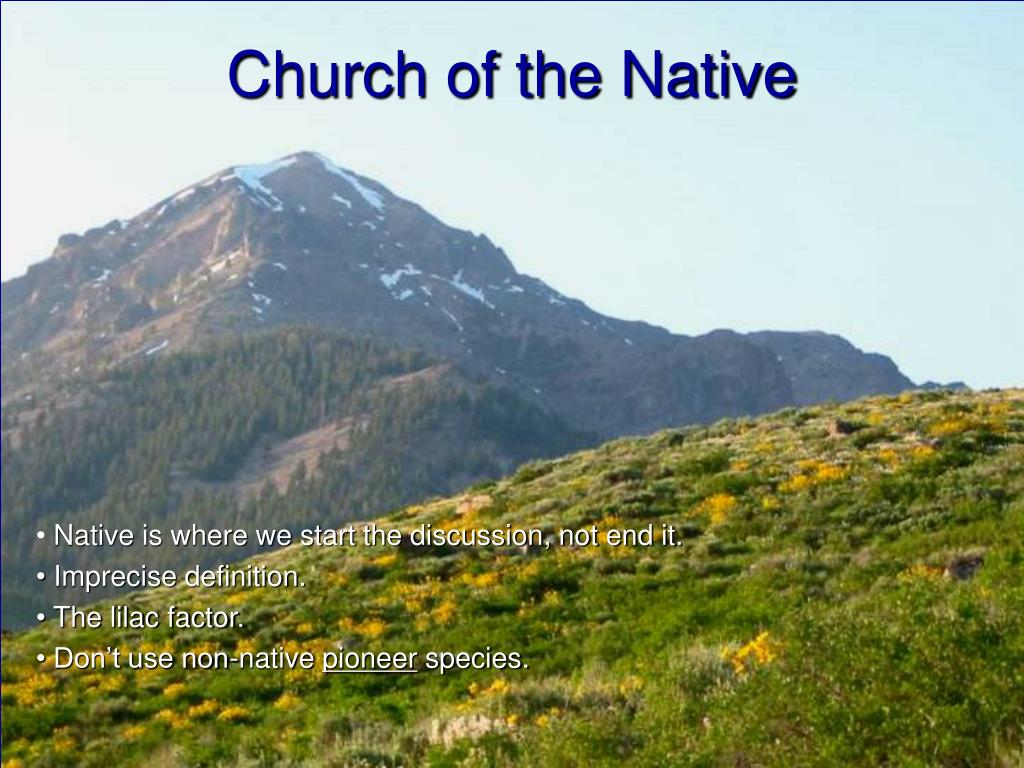 Church of the Native