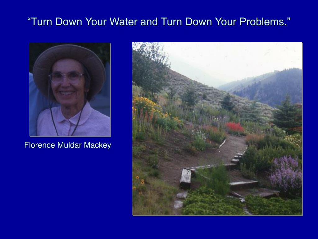 """Turn Down Your Water and Turn Down Your Problems."""