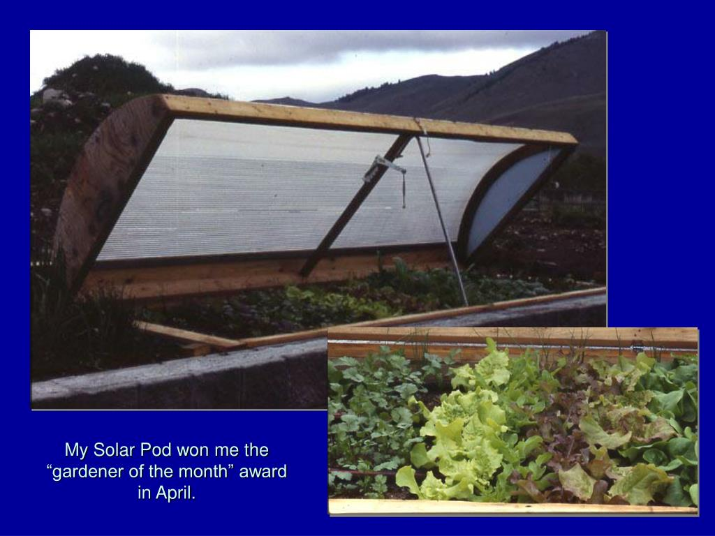 "My Solar Pod won me the ""gardener of the month"" award in April."