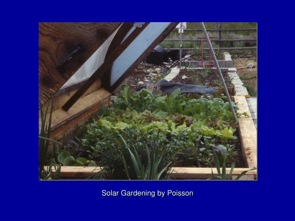 Solar Gardening by Poisson