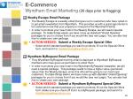 e commerce wyndham email marketing 30 days prior to flagging