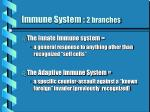 immune system 2 branches