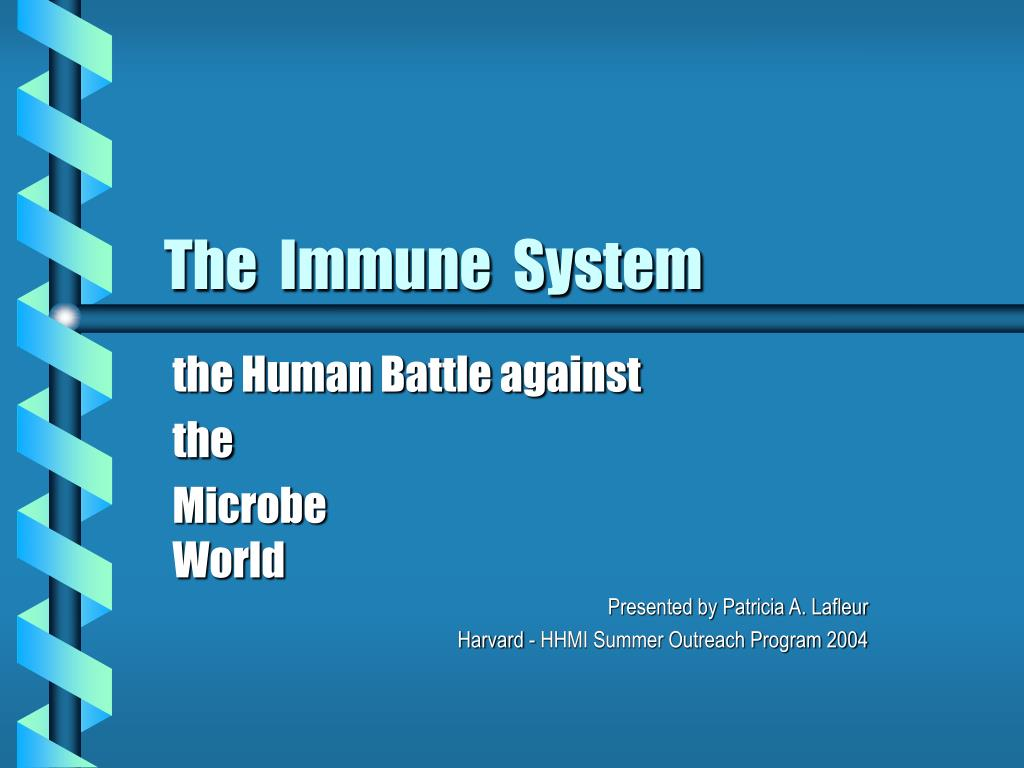 the immune system l.