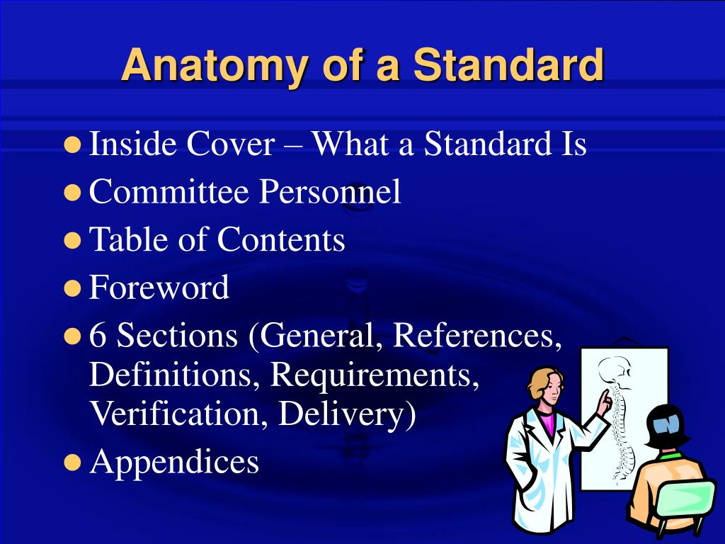 Anatomy of a Standard