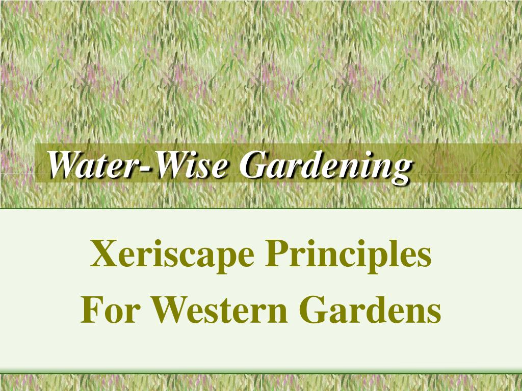 water wise gardening l.