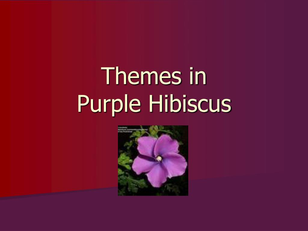 themes in purple hibiscus l.