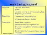 rea laringotraqueal35