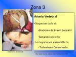 zona 325