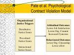 pate et al psychological contract violation model