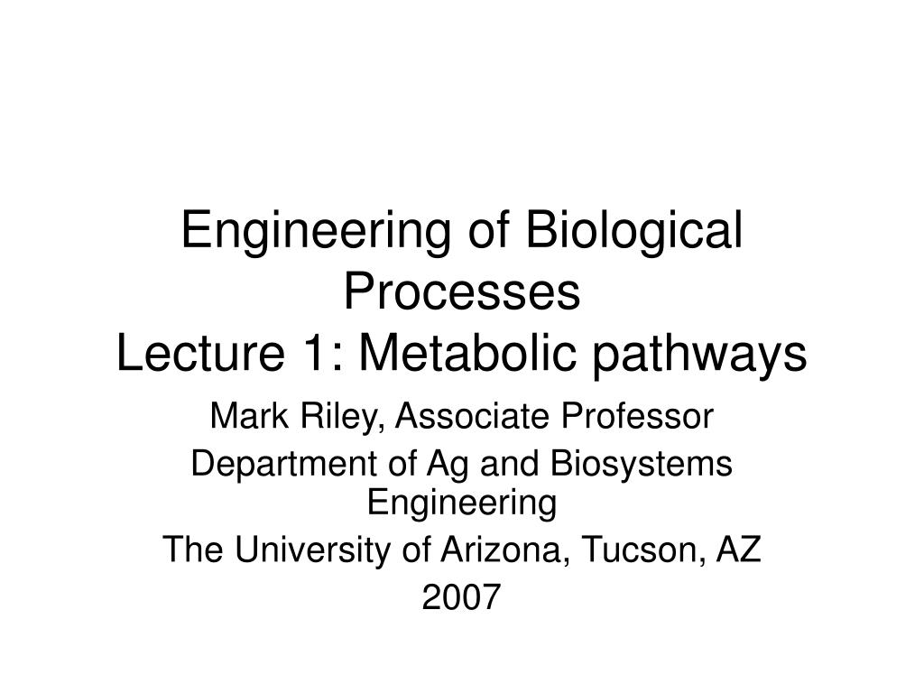 engineering of biological processes lecture 1 metabolic pathways l.