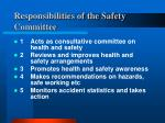 responsibilities of the safety committee