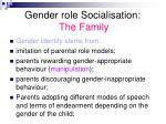 gender role socialisation the family