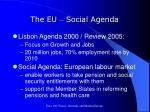 the eu social agenda
