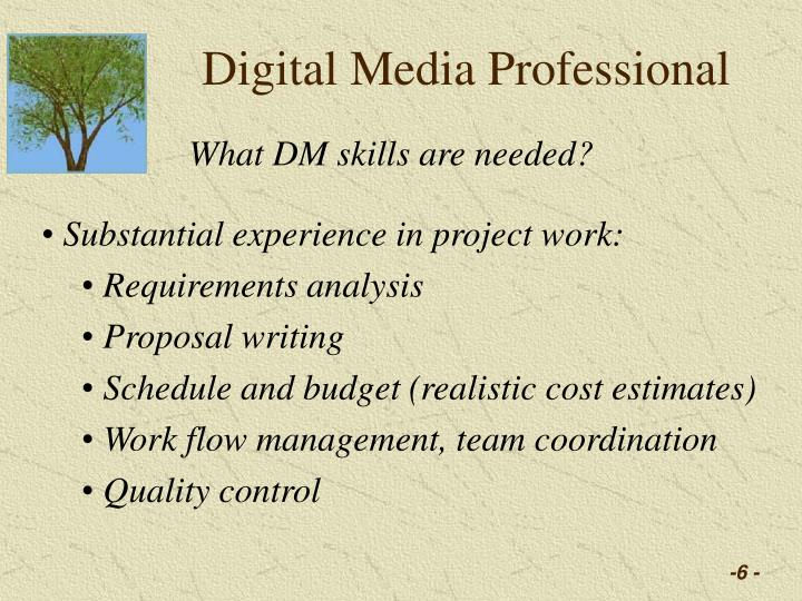 Digital Media Professional