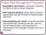 project risk management processes15