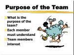 purpose of the team