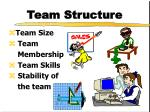 team structure5