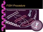 fish procedure1