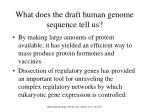 what does the draft human genome sequence tell us11