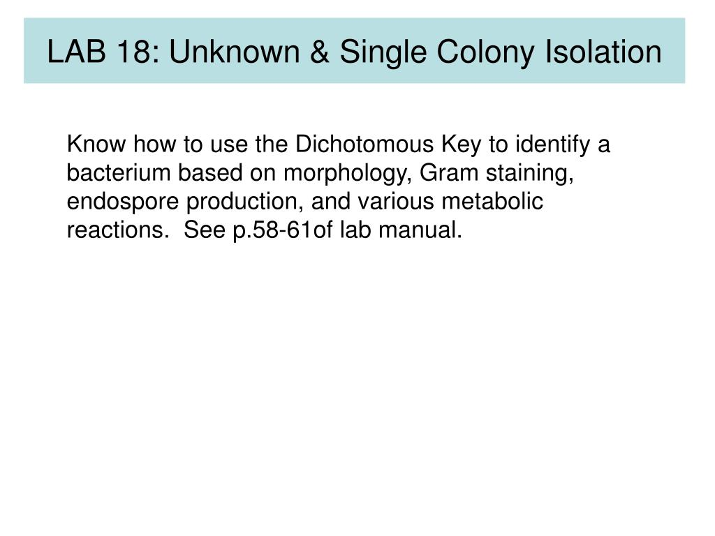 LAB 18: Unknown & Single Colony Isolation