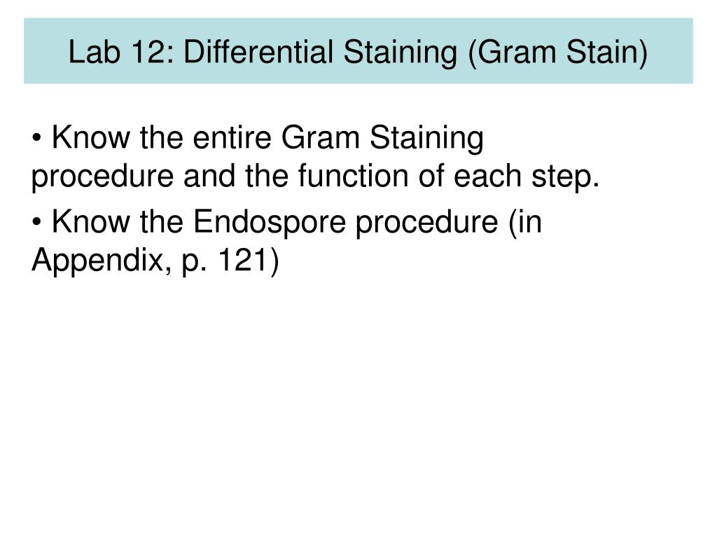 Lab 12: Differential Staining (Gram Stain)