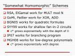 somewhat homomorphic schemes
