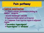 pain pathway8